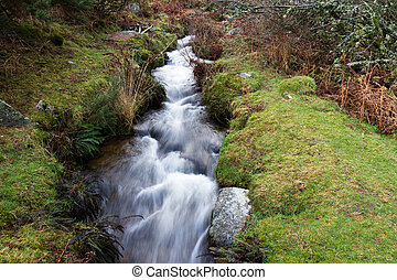 Devonport Leat, old channel carrying water, Dartmoor...