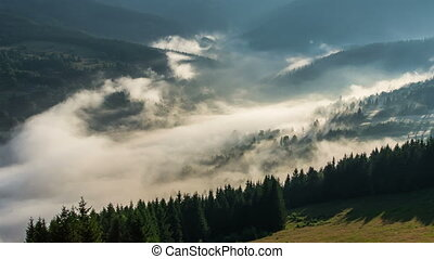Mystic Foggy Morning above Mist Clouds over Trees Forest...