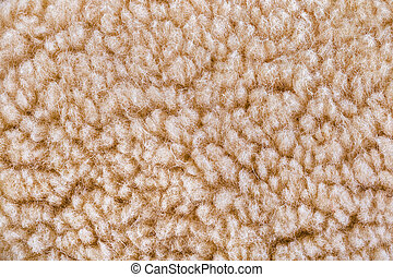Woolly sheep fleece background - Woolly sheep fleece texture...