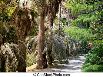 Arboretum of tropical and subtropical plants.