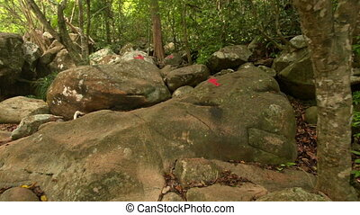 Boulders with Red Arrows Showing Direction in Park - camera...