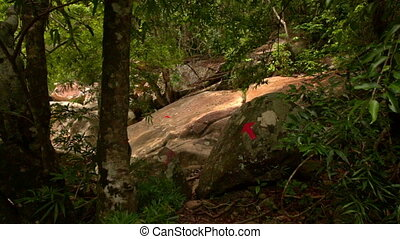 Closeup Motion According to Red Arrows on Boulders in Park -...