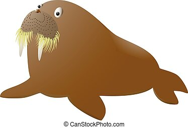 Isolated walrus on white background. Vector illustration