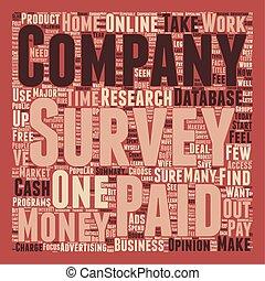 Paid Survey text background wordcloud concept
