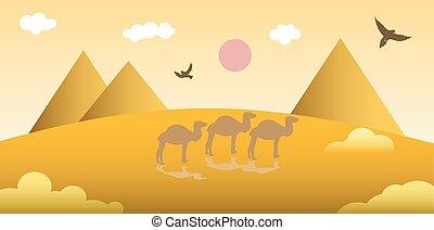 the desert landscape