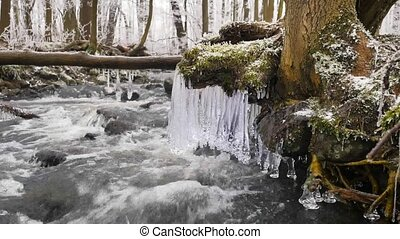 Shinning icicles. Frozen drops above winter stream created beautiful icicles. Glittering ice above foamy winter brook. Fallen trunk and branch with ice cover and small snow flakes