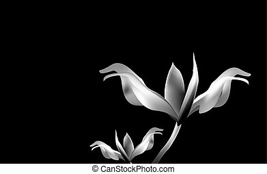 Precious Golden flower in hour of dawn. Lily delicate and...