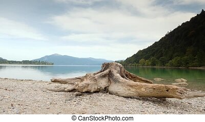Time Lapse video of old white tree stump on beach of Alps lake. White gravel in bay. Raised camera view. Blue green water, mirror of water level. Mountain peaks in background.