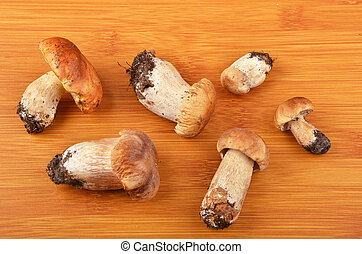 Boletus edulis mushroom on wooden board background