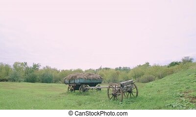 The cart with hay in an old village in Russia