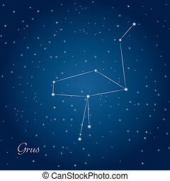 Grus, crane constellation at starry night sky
