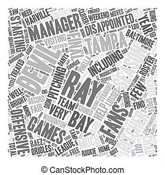 Tampa Bay Devil Rays Preview text background wordcloud...