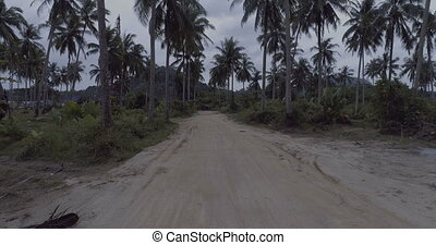 Palm tree gravel road - Smooth shot following backwards...
