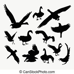 Duck, goose, swan, eagle bird silhouette