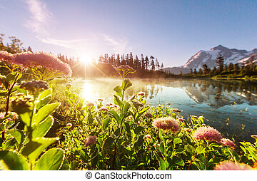 Scenic Picture lake with mount Shuksan reflection in...