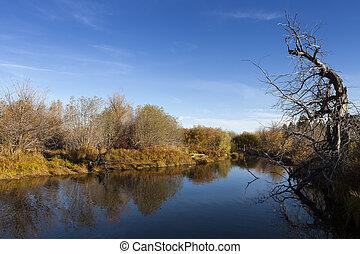 Taylor Creek, Lake Tahoe. Calm reflective river and tree...