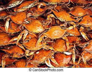 Steamed Blue Crabs - Blue crabs freshly steamed and turned a...