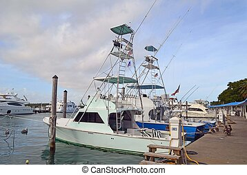 Sport Fishing Boats for Charter - Sport fishing boats for...