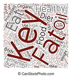 The Keys To Healthy Weight Loss And Wellness text background wordcloud concept