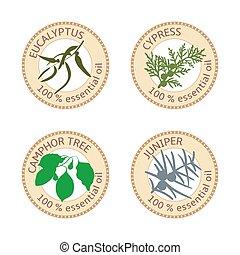 Set of flat essential oil labels. 100 percent. Eucalyptus, cypress, camphor tree, juniper