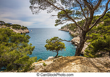 The gulf - Calanque with turquoise water - National Park...