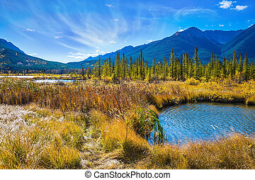 Concept of ecotourism in Banff - Magnificent sunny day in...