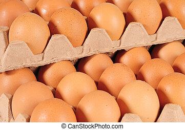 Eggs - Overlapped eggs