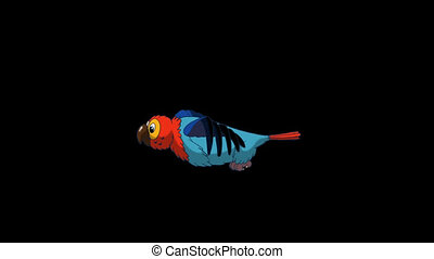 Colorful Parrot Flies. Animated footage with alpha channel....