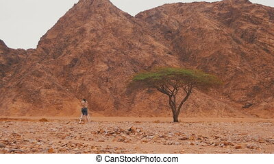 Woman Videographer with Tripod in the Desert of Egypt. Green...