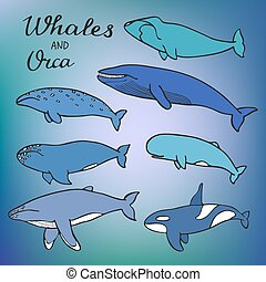 Whales and orca set. Vector illustration - Whales and orca...