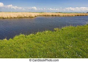 landscape, Friesland, Netherlands