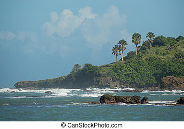 Cliffs and rocks with palm trees along the Dominican...