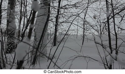 Truck Winter forest road - winter road with a truck in a...