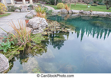 beautiful pond with blue water in an exotic park