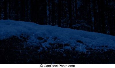 Passing Log Covered In Snow At Night - Closeup tracking shot...