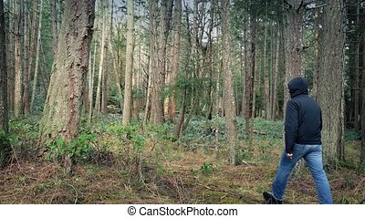 Person Walks Through Woodland - Man walks through rugged...
