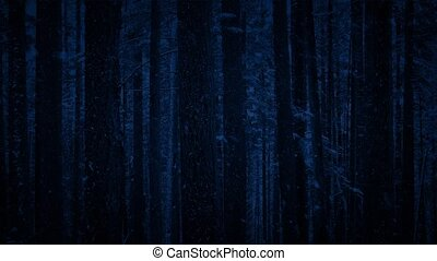 Snowfall In Forest At Night - Looped