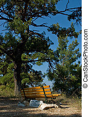 Lovers bench - A bench on a hill in Limenaria on Thasos...