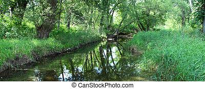 Pretty creek scene in Illinois