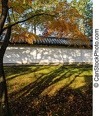 Autumn color leaves at Tofukuji temple in Japan - Maple...