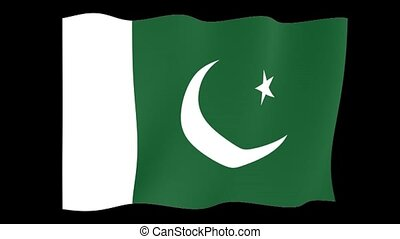 Pakistani flag . Waving - Flag animation for using in foto's...