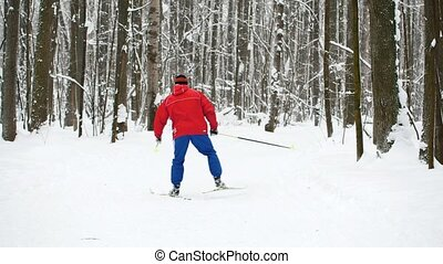 Winter Sport - skier in red suit slides in snow forest,...