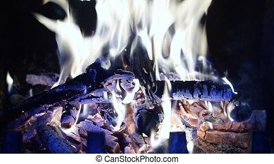 Beautiful fire with wooden logs burning in fireplace