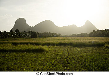 Khao ok talu Stock Photo Images. 7 Khao ok talu royalty ...