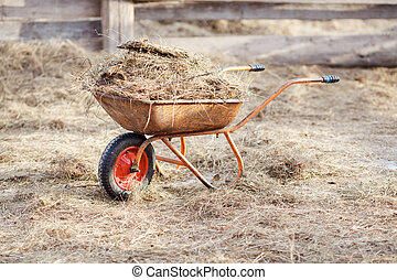 Wheelbarrow with manure and hay in the middle of the paddock