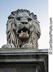 Lion statue on old Chain bridge on danube river in Budapest...