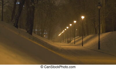 Night Snowing Alley - Park alley with lamp post during a...