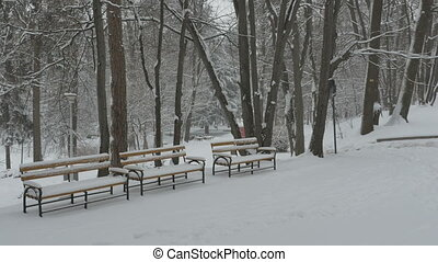 Snowing Benches in Park - Snow depositing on the benches in...