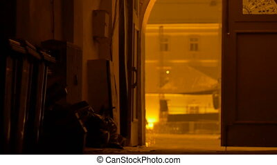Night Snow Yard Gate - View of snowing night in downcenter...