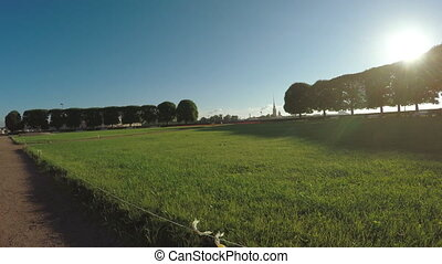 Lawn in light of morning sun - Dynamic camera movement along...